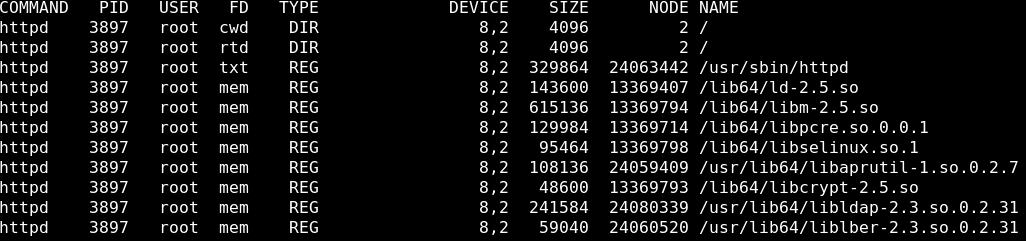 lsof Command Usage and Examples