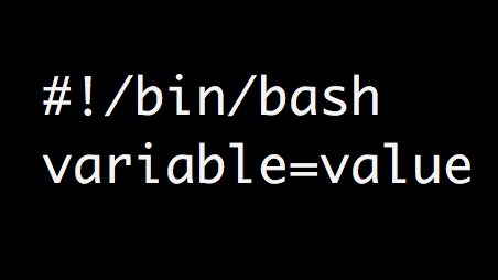 Bash Shell Variables