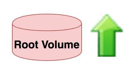 Increase Root Volume