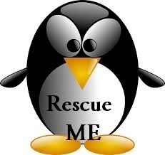 Ultimate method to install package from linux rescue mode