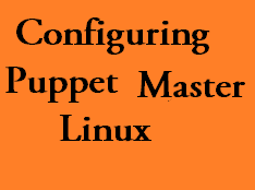 puppet master in linux