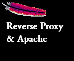 reverse proxy and apache server
