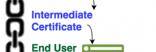 Certificate Chain Validation Process