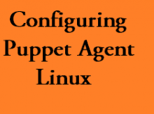 puppet agent in linux